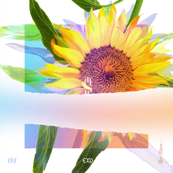 [Re:flower] PROJECT #4